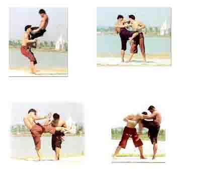 muay thai the art of fighting pdf